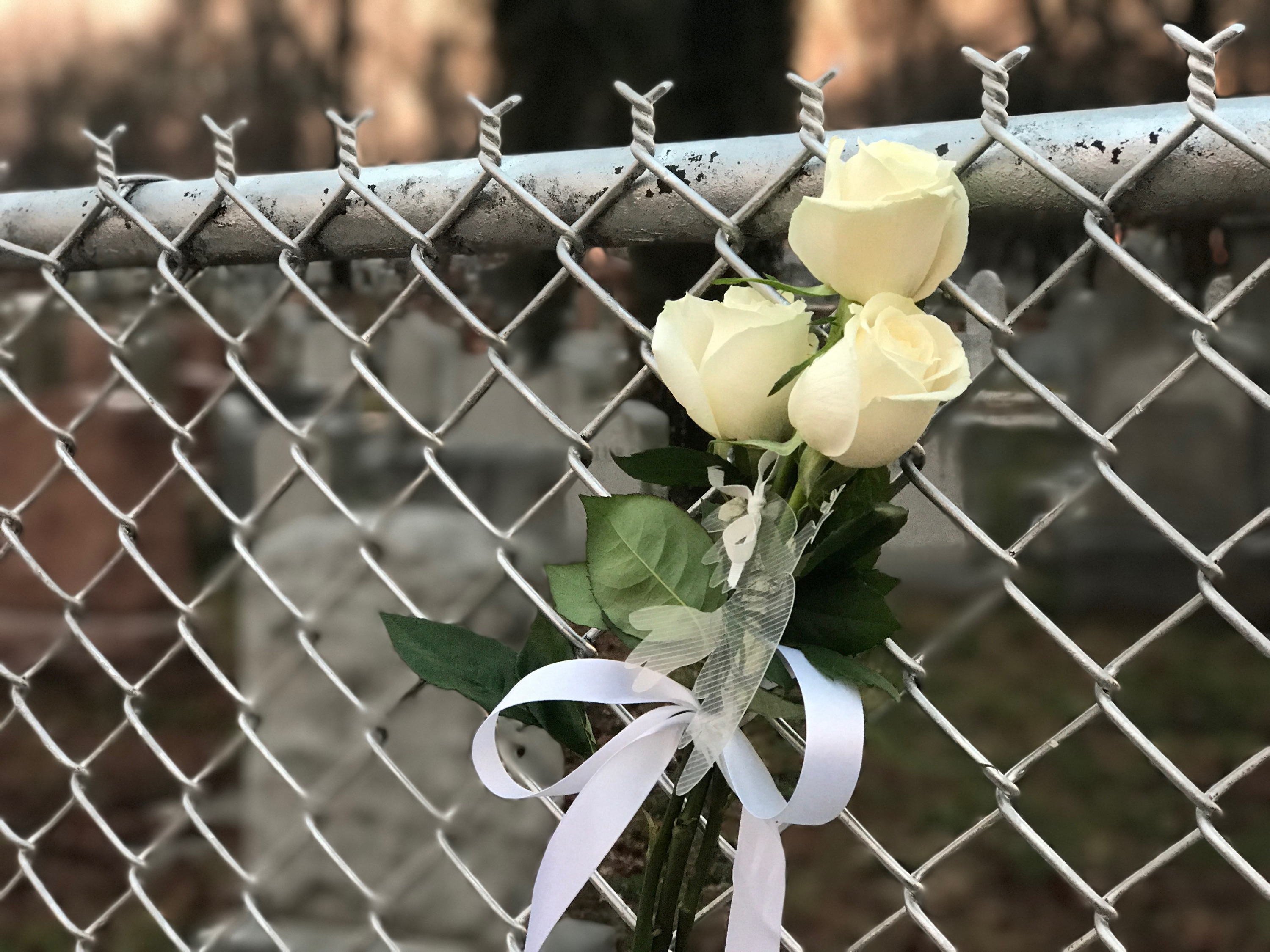 Flowers Left At A Fence Surrounding The Chesed Shel Emeth Society Cemetery In University City, A Suburb Of St. Louis, Missouri. Photo By Ian Mason/GSS Correspondent.